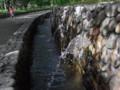 [酒津公園][岡山県倉敷市酒津1556][用水路][BBQ][水遊び]