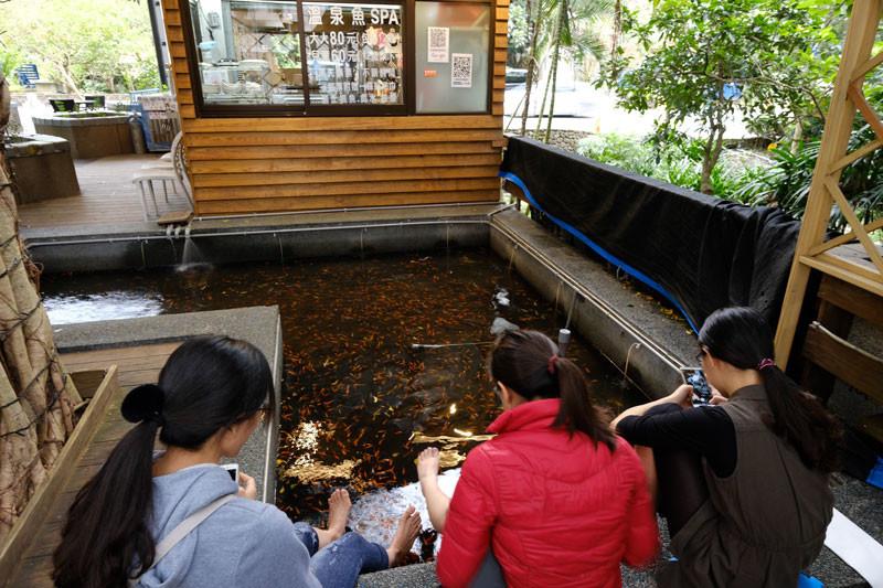 礁渓温泉:温泉魚