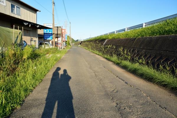 散歩(2015年7月26日)