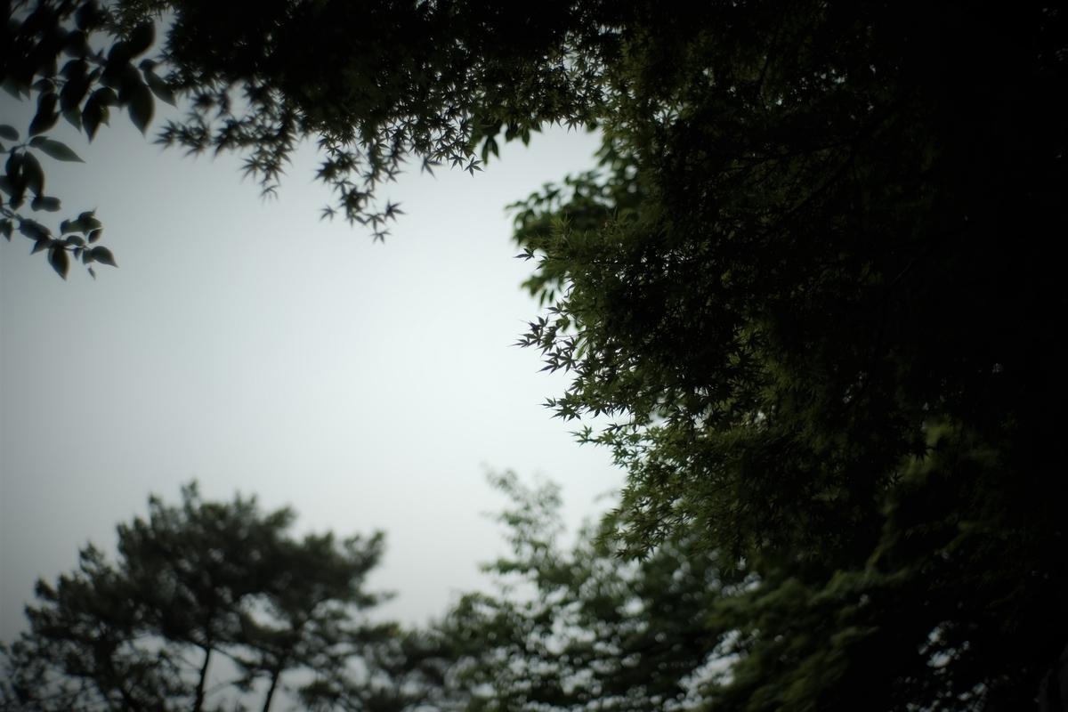 f:id:PapasCamera:20210507125343j:plain