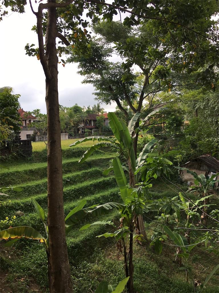 f:id:PasarKumangmang:20180802114057j:image