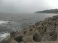 日本海なう
