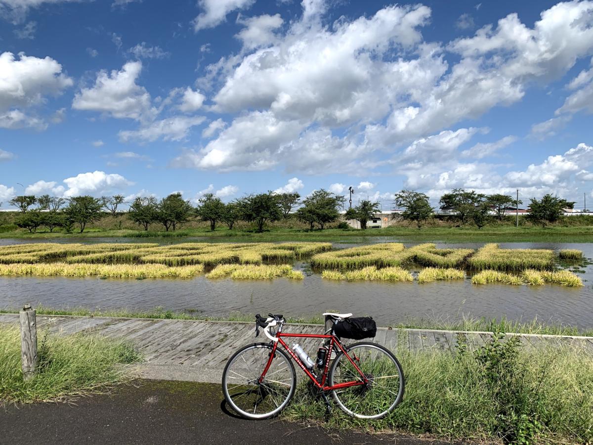 f:id:PikaCycling:20201109230431p:plain