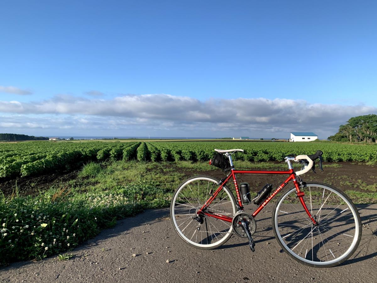 f:id:PikaCycling:20201218201457p:plain