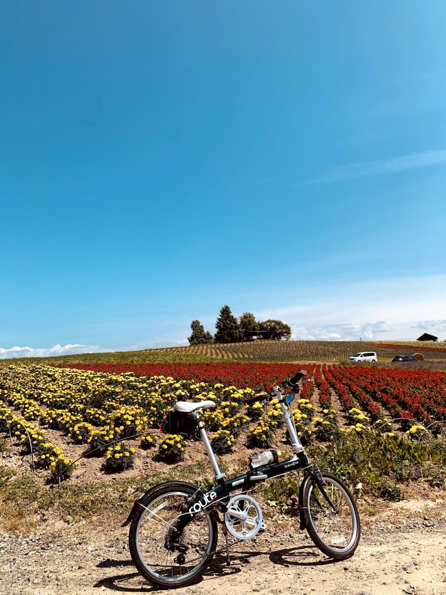 f:id:PikaCycling:20201218203718p:plain