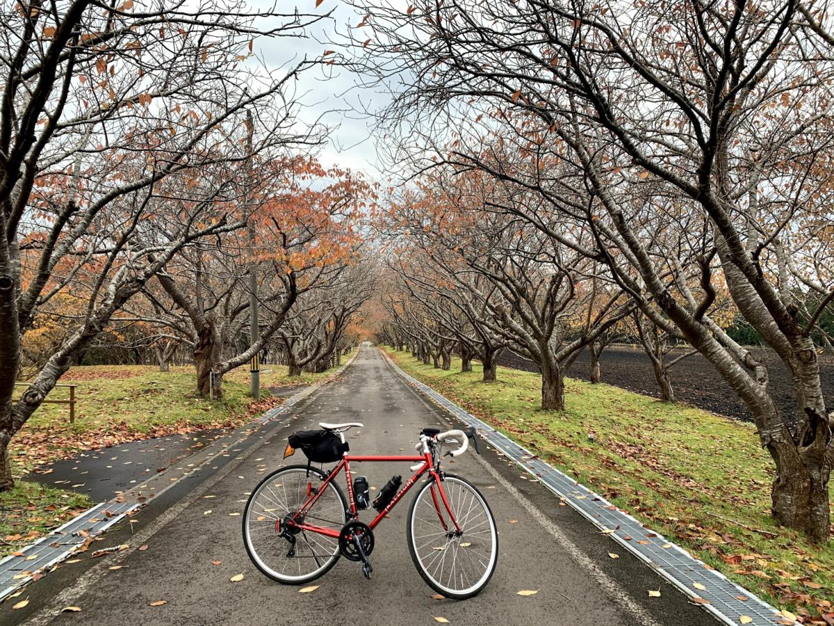 f:id:PikaCycling:20210211115237p:plain