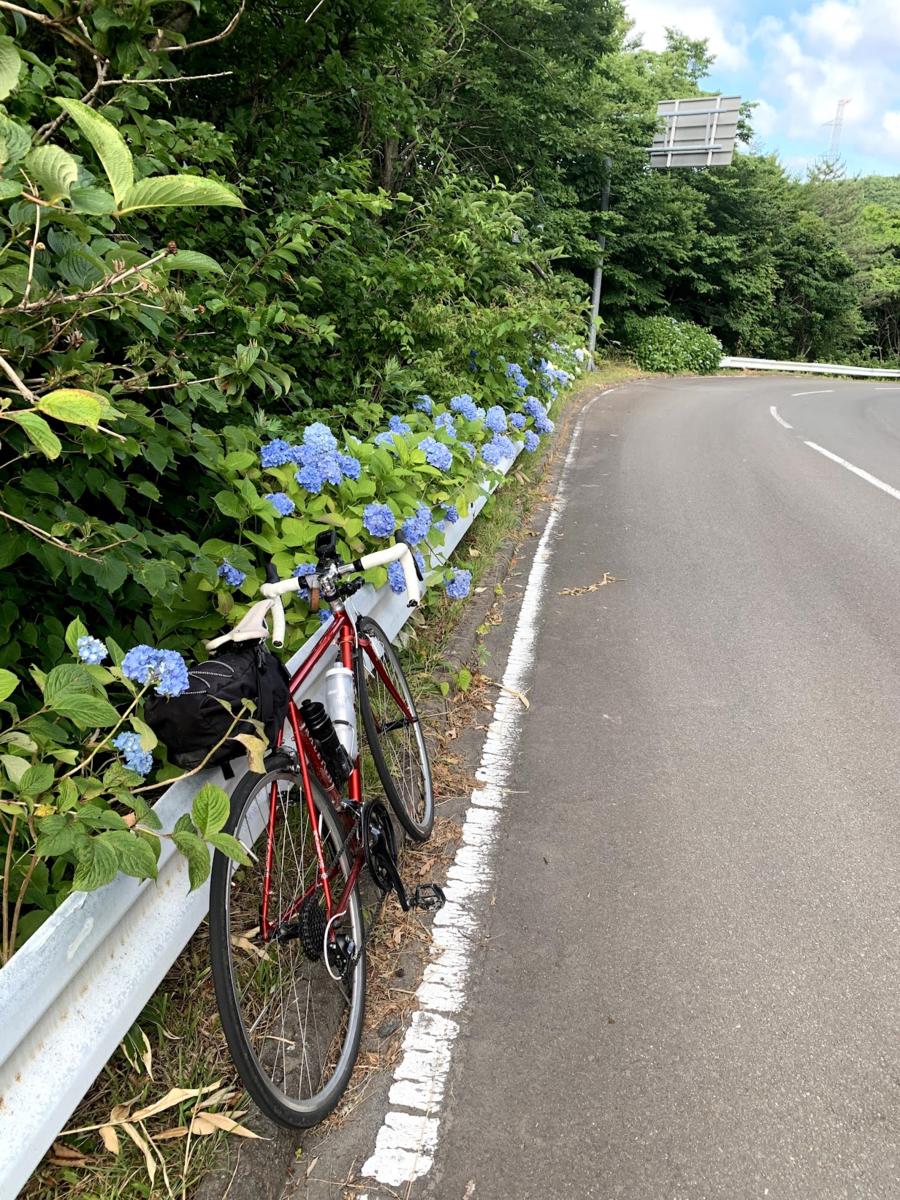 f:id:PikaCycling:20210801163419p:plain