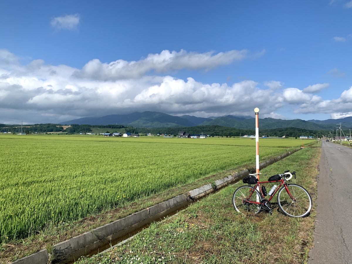f:id:PikaCycling:20210814102837p:plain
