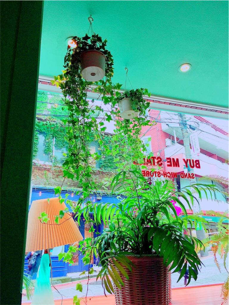 f:id:PineappleandGrapes:20161029172715j:image