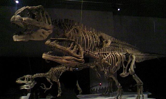 マプザウルスの親子とメガラプトル(ガキを狙ってる設定?)