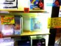 [swimmingpoo1]ビレバン、黄色いポップが嬉しい!