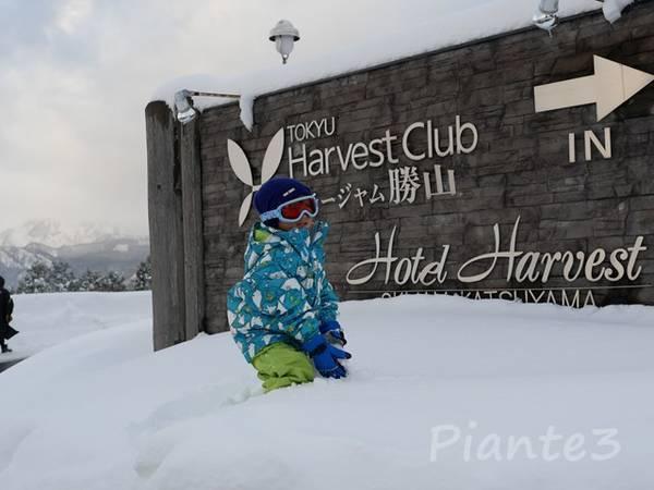 スキージャム勝山の看板前で雪で遊ぶ子供