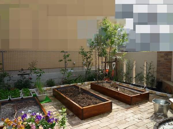 お庭の中の菜園