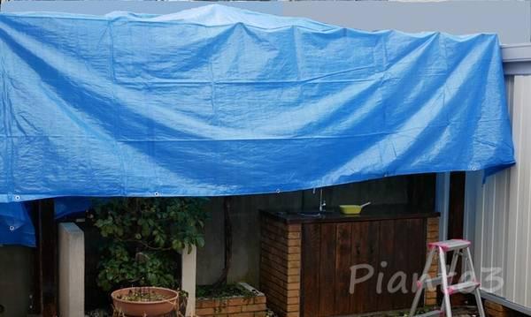 雨が降る中ブルーシートで雨除けして庭のパーゴラメンテナンス