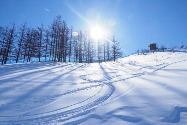 スキー場のゲレンデの写真