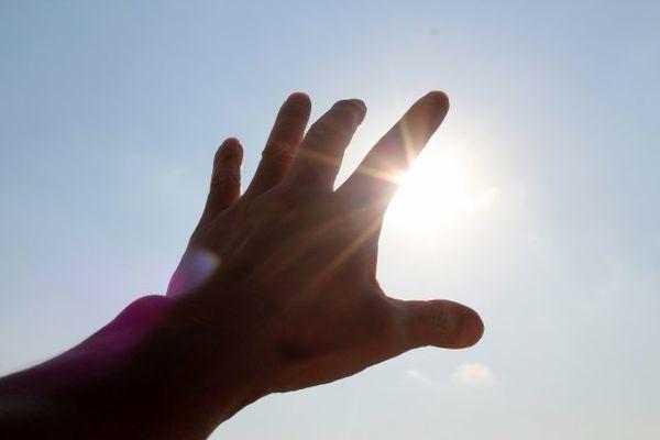 太陽に向かって伸ばした手