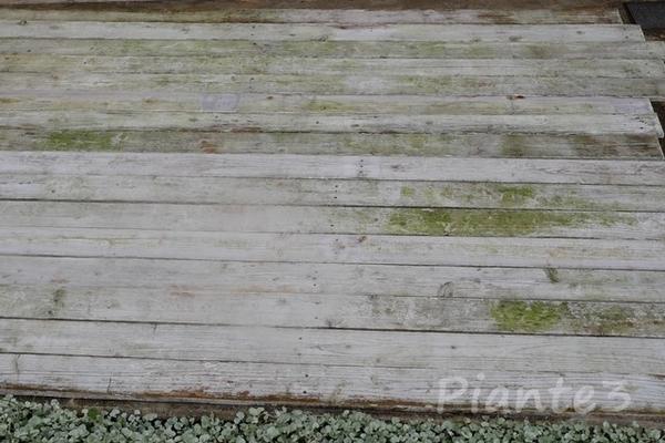 焼杉フェンス板