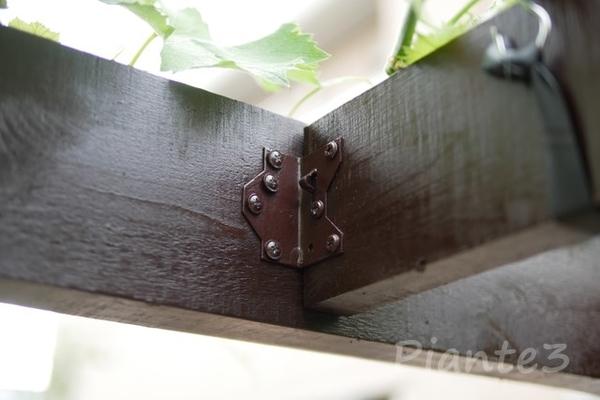 フレーミングアンカーで垂木と桁を接続した写真