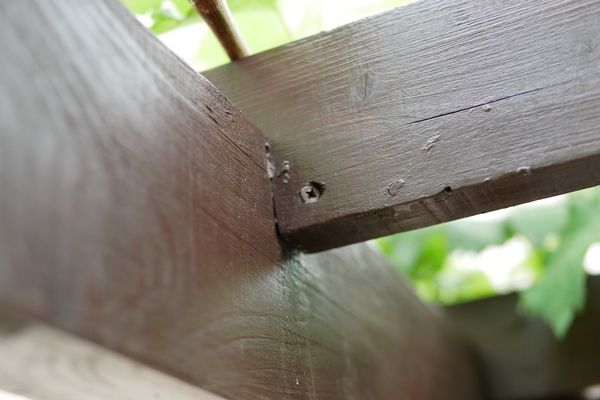パーゴラ垂木をコーススレッド斜め打ちで固定していた写真