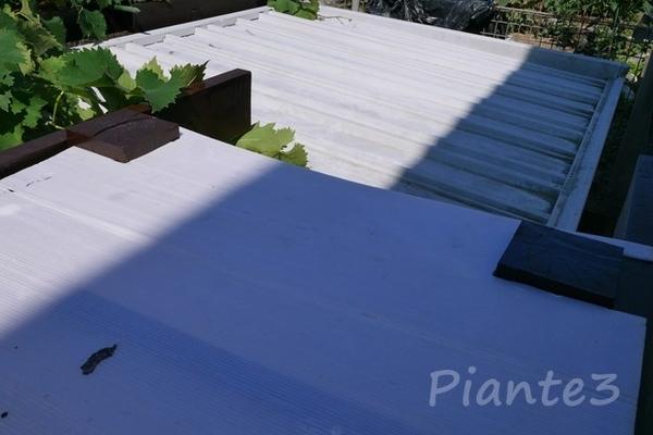 養生用プラダン製の型紙を垂木に合わせている写真