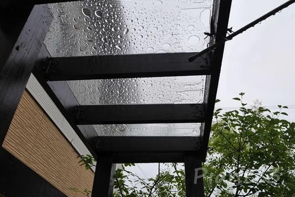 雨が降った後のポリカ屋根の水溜まりの写真