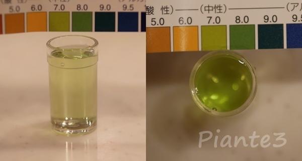 水道水をpH試験液で測定した写真