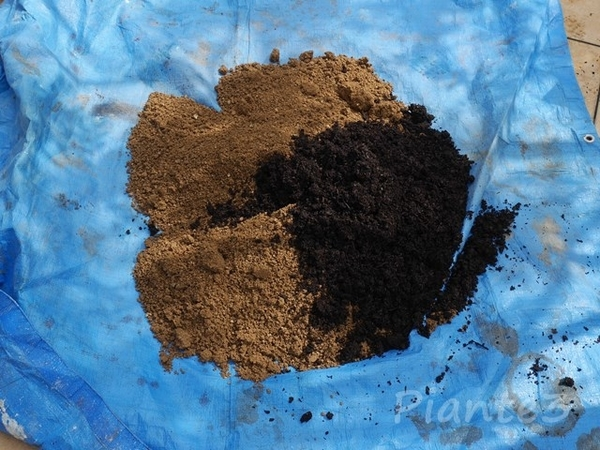 真砂土と堆肥の写真
