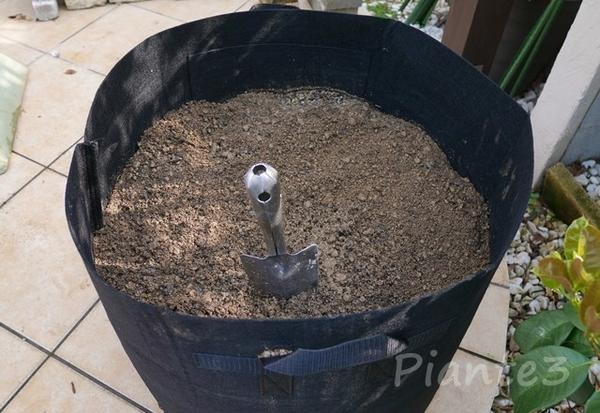 事前に準備していた真砂土と堆肥のブレンド土の写真