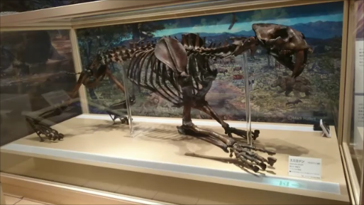 f:id:Prehistoriclifeman:20200109214405p:plain