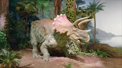 f:id:Prehistoriclifeman:20200109214838p:plain