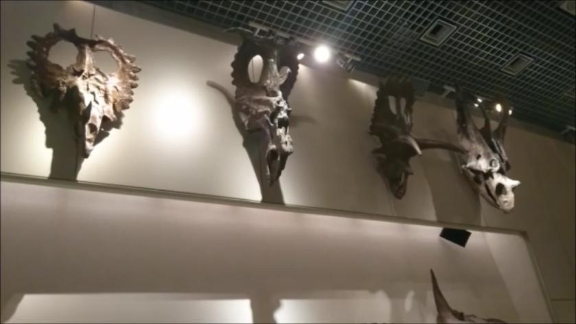 f:id:Prehistoriclifeman:20201010162047p:plain