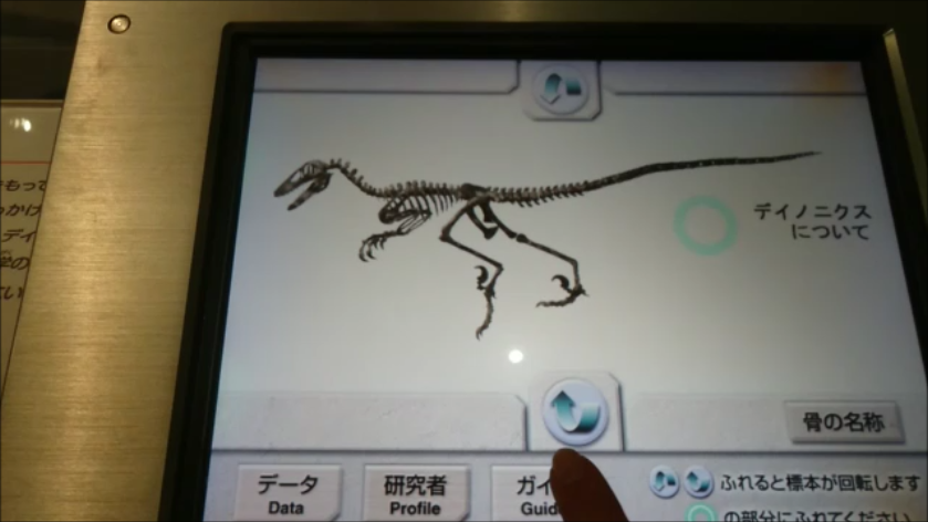 f:id:Prehistoriclifeman:20201011064922p:plain