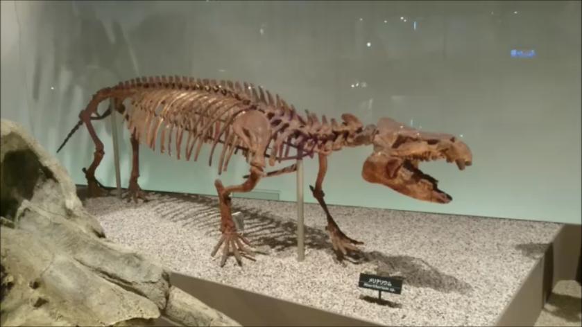 f:id:Prehistoriclifeman:20201014220808p:plain