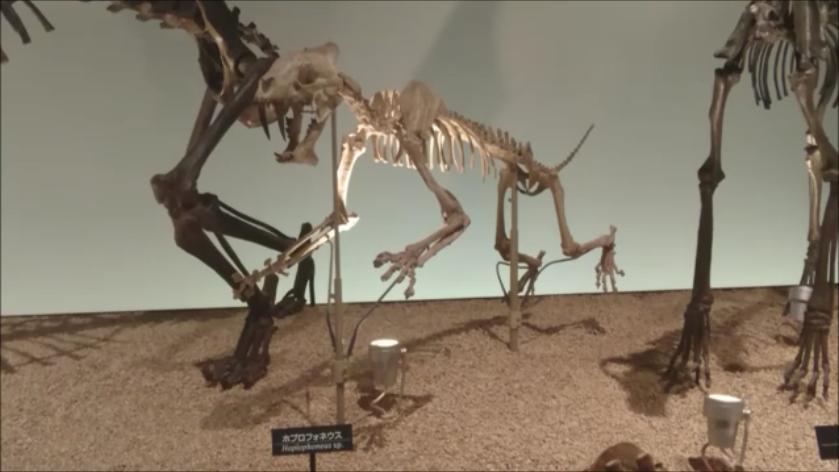 f:id:Prehistoriclifeman:20201014221901p:plain