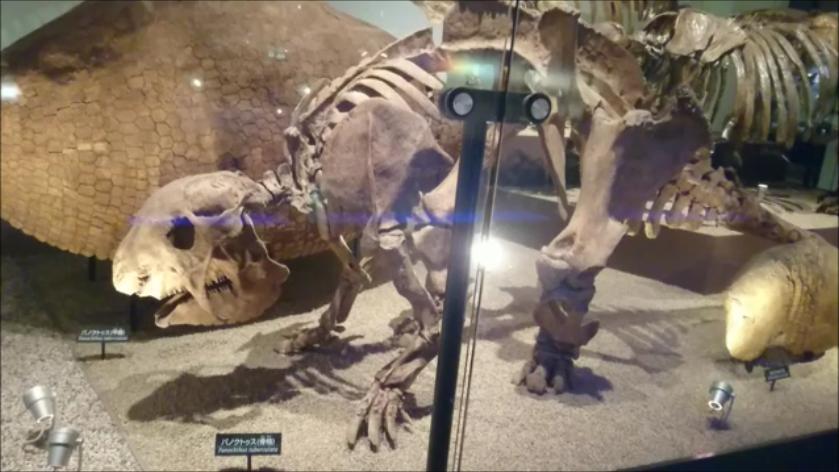 f:id:Prehistoriclifeman:20201014222125p:plain