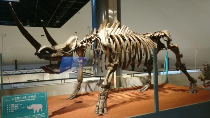 f:id:Prehistoriclifeman:20201216215455p:plain