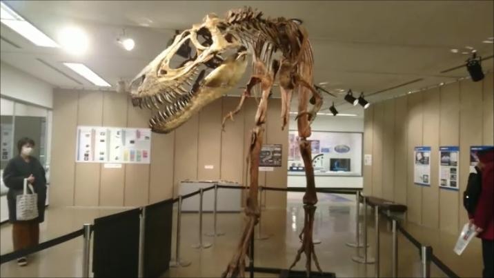 f:id:Prehistoriclifeman:20201231074727p:plain
