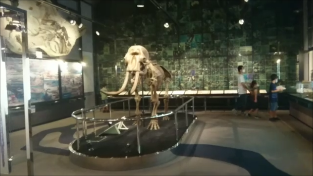 f:id:Prehistoriclifeman:20210110140701p:plain