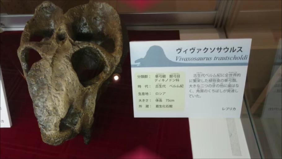 f:id:Prehistoriclifeman:20210113132857p:plain