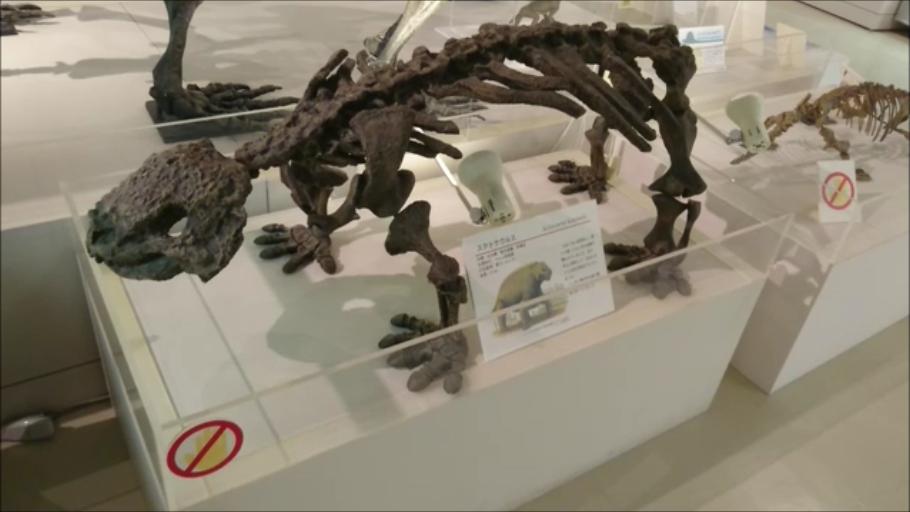 f:id:Prehistoriclifeman:20210113133426p:plain