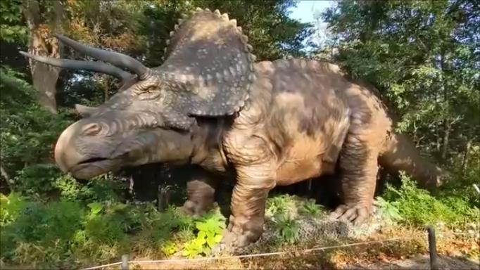 f:id:Prehistoriclifeman:20210206152702p:plain