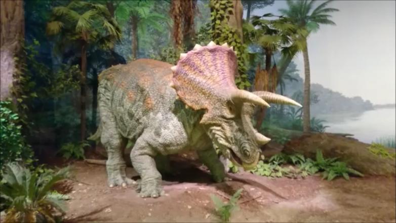 f:id:Prehistoriclifeman:20210305223246p:plain