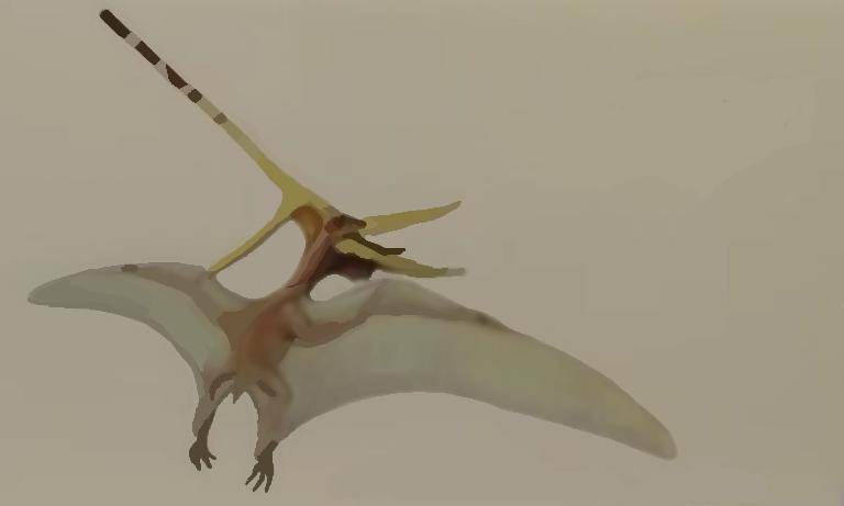 f:id:Prehistoriclifeman:20210313154755p:plain
