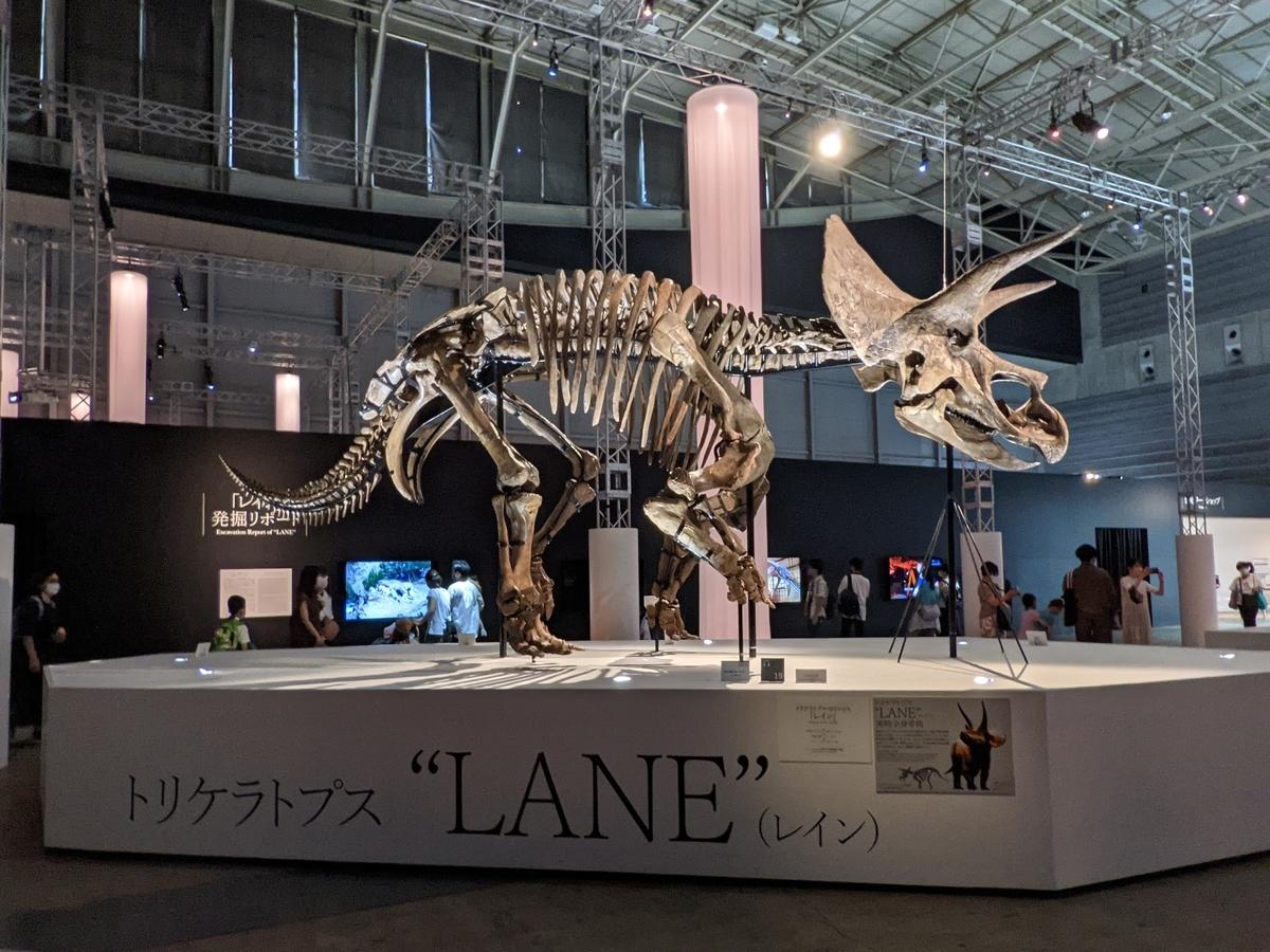 f:id:Prehistoriclifeman:20210807104127j:plain