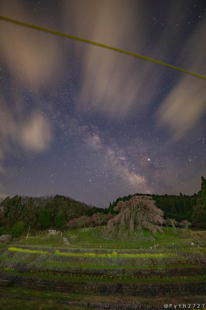 奈良県又兵衛桜と天の川の星景写真
