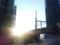 テンションをリリースしに立ち喰すすり、中野駅で西陽