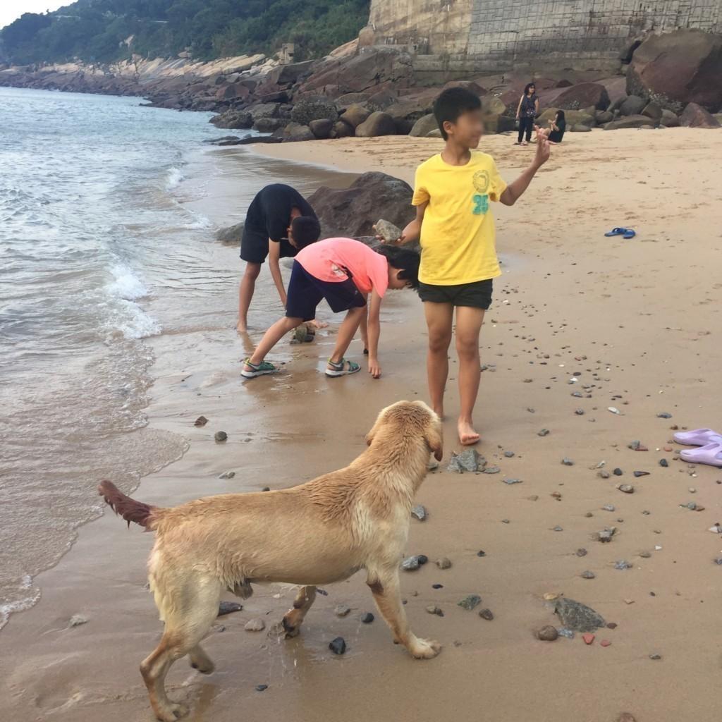f:id:QianChong:20170806163821j:plain
