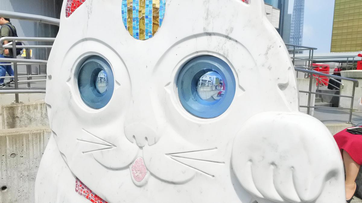さらざんまい 聖地巡礼 猫