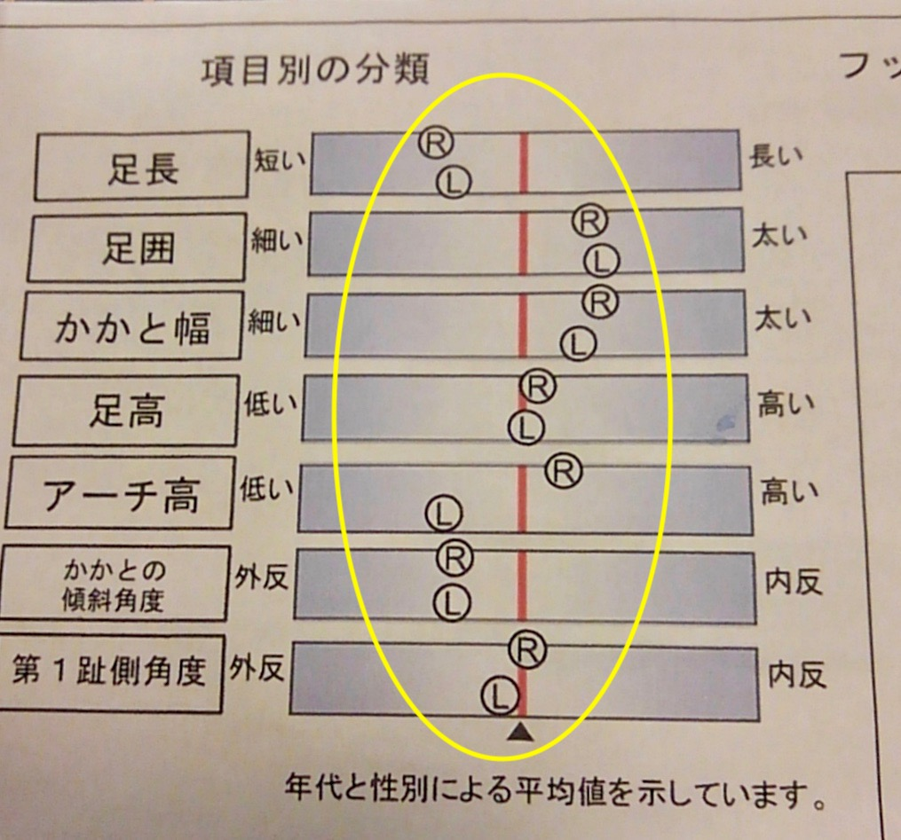 f:id:Qshima:20190715090737j:plain
