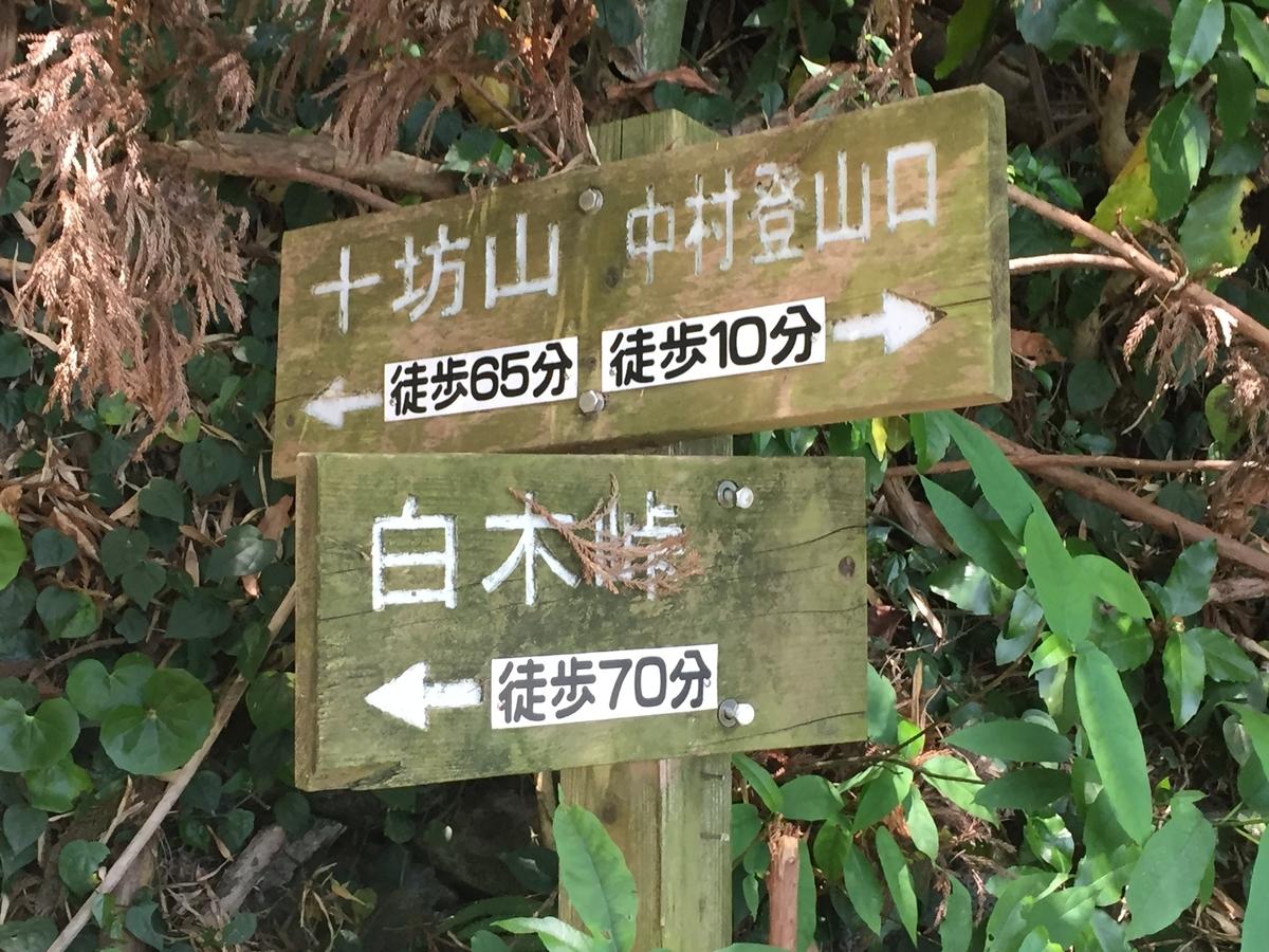 f:id:R-hanohano:20190528014944j:plain
